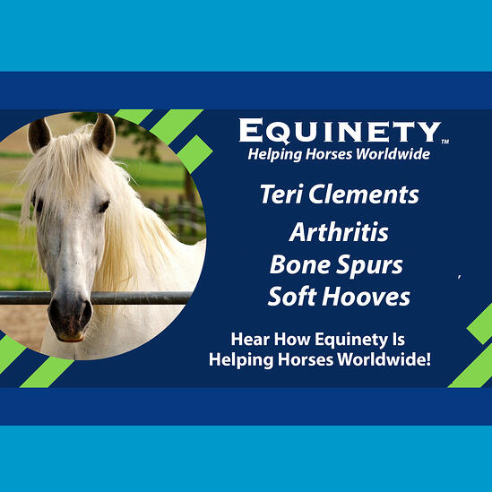 102 - Teri Clements – PA – 23 yr old mare - Arthritis – Bone Spurs in Coffin Joints – Soft Hooves copy