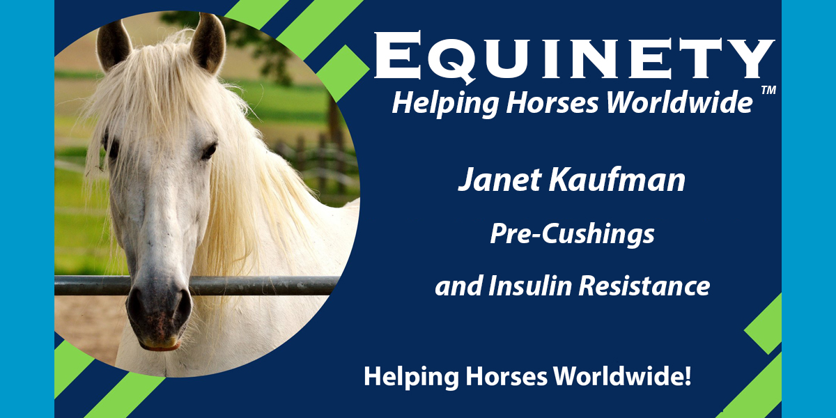 Janet Kaufman | Pre-Cushings and Insulin Resistance