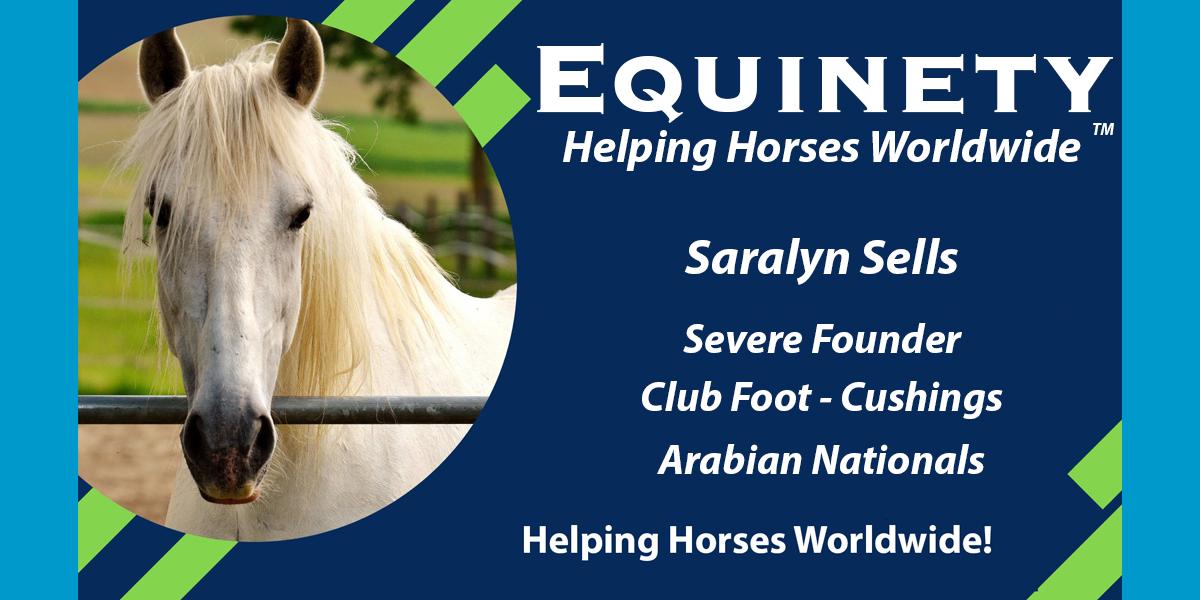 Saralyn Sells - Arabian Horse - Club Foot - Severe Founder - Cushings