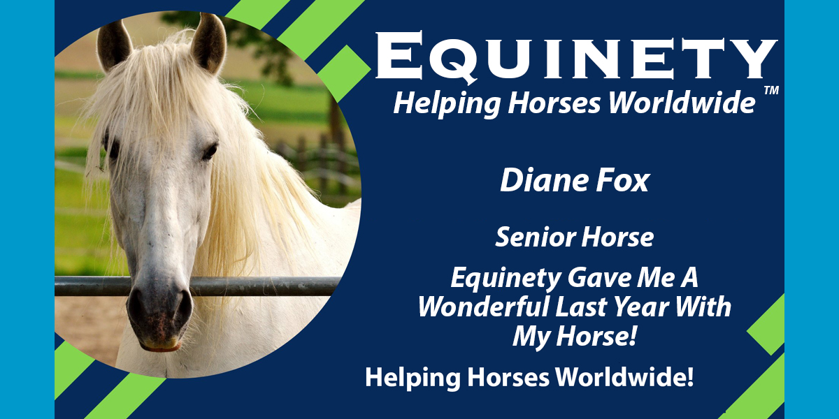 Diane Fox - Senior Horse
