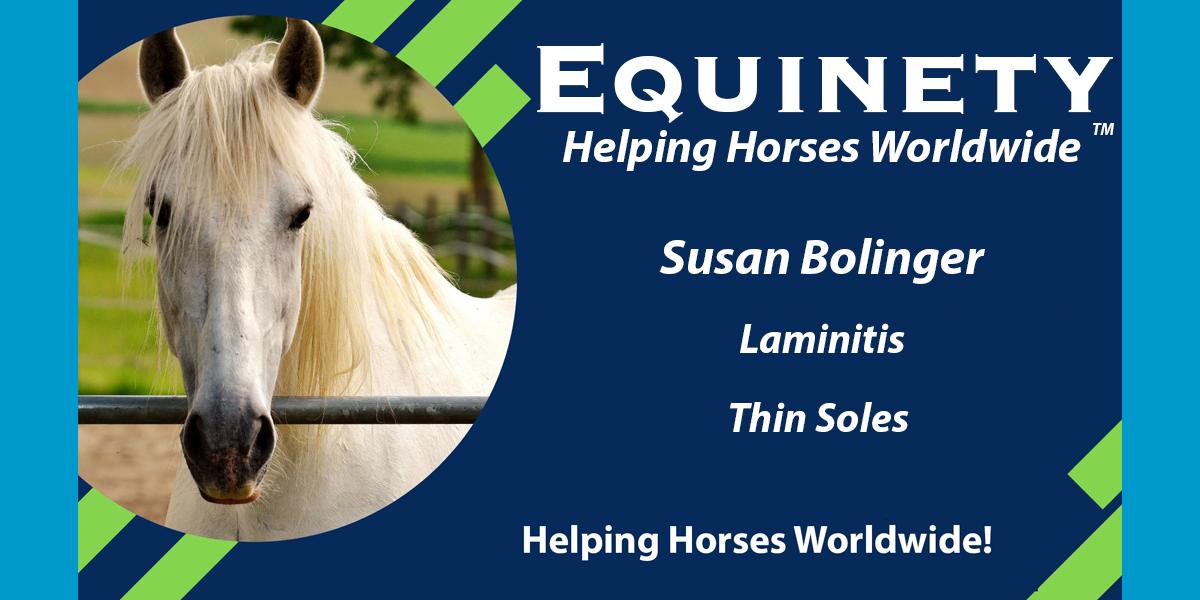 Susan Bolinger - Laminitis - Thin Soles