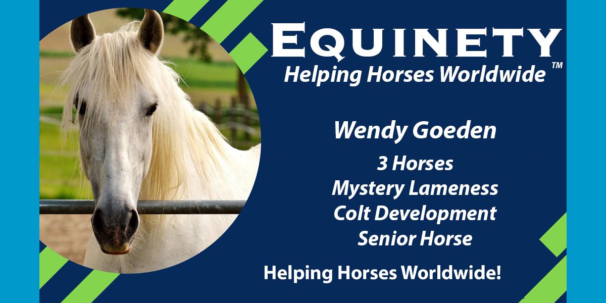 Wendy Goeden – Mystery Lameness – Colt Development – Senior Horse
