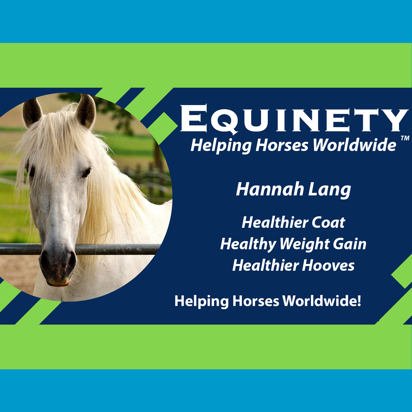 Hannah Lang - Healthier Coat - Healthy Weight Gain - Healthier Hooves