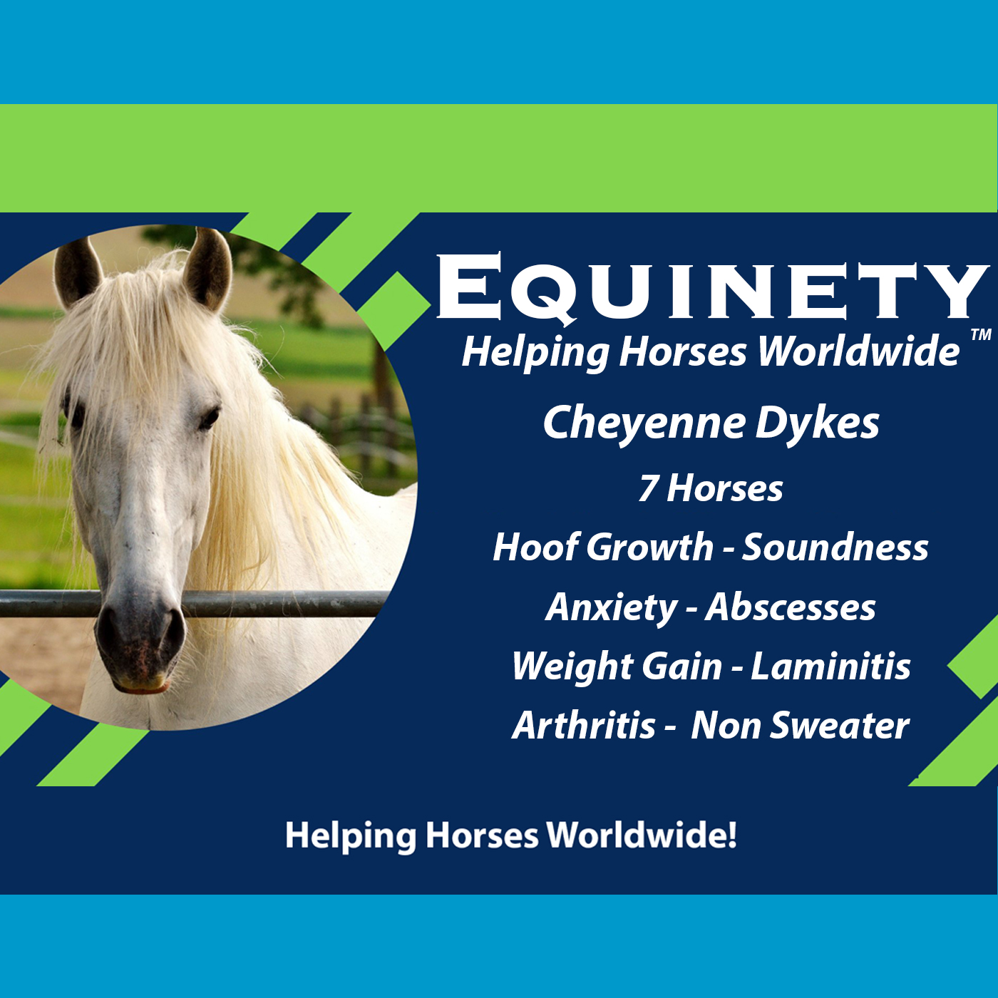 Cheyenne Dykes  – 7 horses – hoof growth – anxiety – laminitis – arthritis - abscesses – non sweater – weight gain - soundness