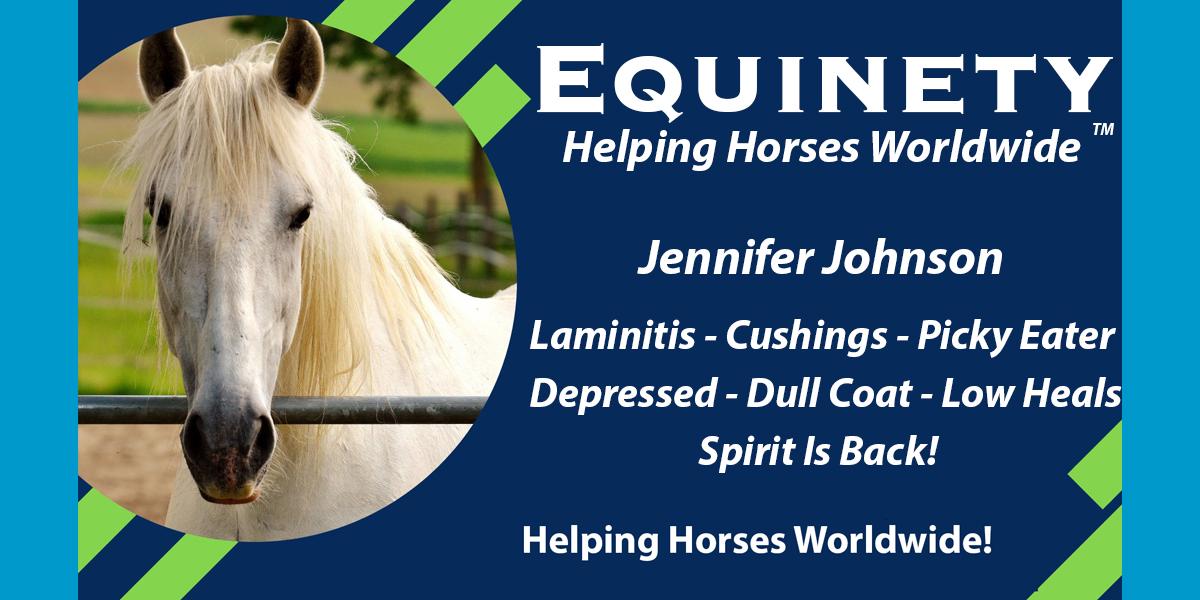 Jennifer Johnson – Laminitis – Cushings – Picky Eater – Depressed – Dull Coat – Spirit is back.jpg