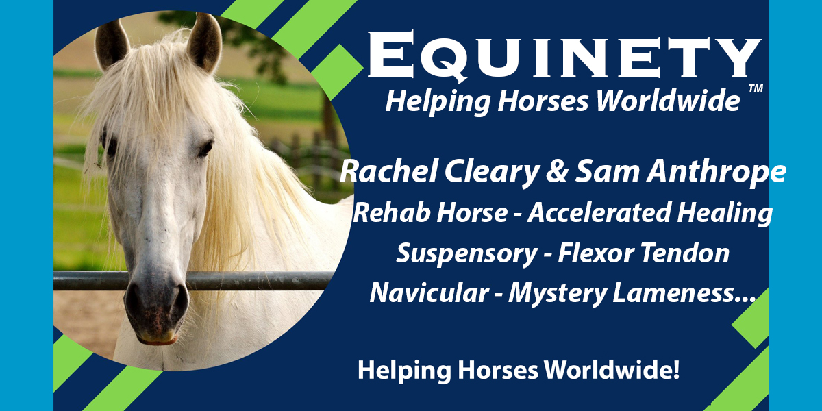 059 - Rachel Cleary & Sam Anthrope - Rehab Horse - Accelerated Healing - Suspensory - Flexor Tendon - Navicular - Mystery Lameness