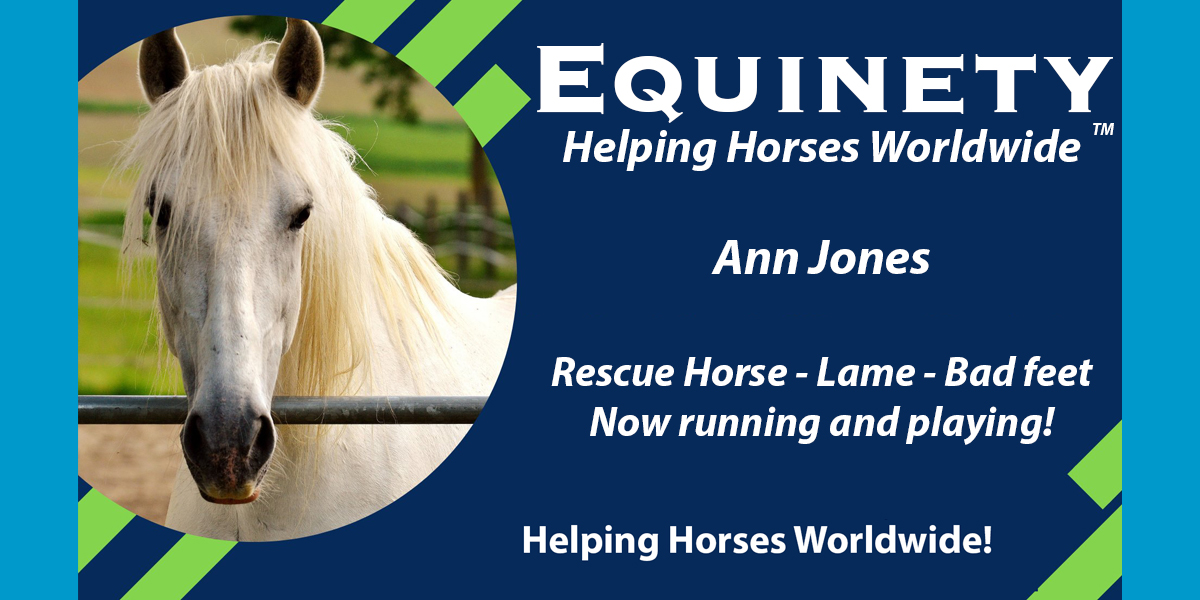Ann Jones – Rescue horse – Lame - Horrible Feet – Now Running and Playing