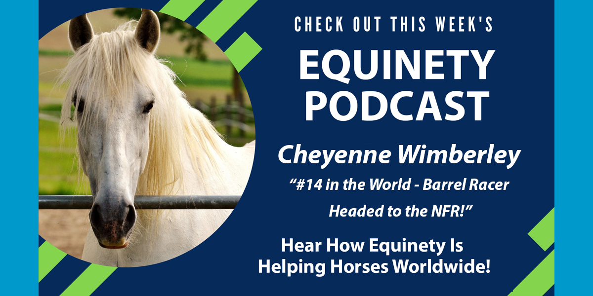Cheyenne Wimberley - Ranked 14 in the world - NFR - High Performance Horses - Recovery - Stamina - Focus - Healthy and Happy Horses