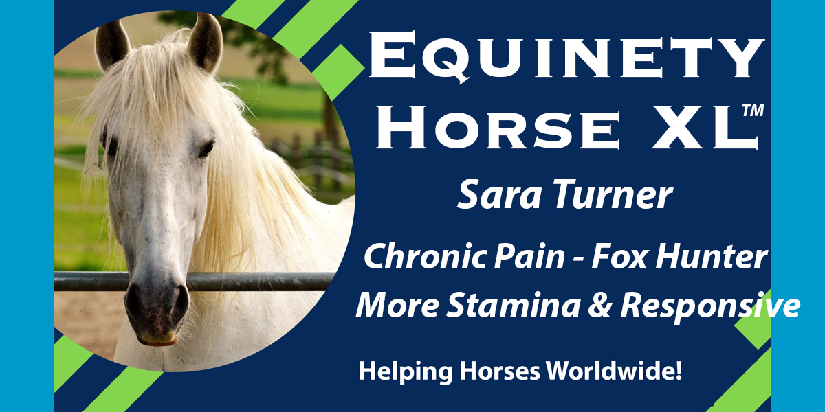 047 – Sara Turner - BIG Skeptic – Performance Horses – Chronic Pain - Fox Hunting – More Stamina – Responsive – Less Stressed