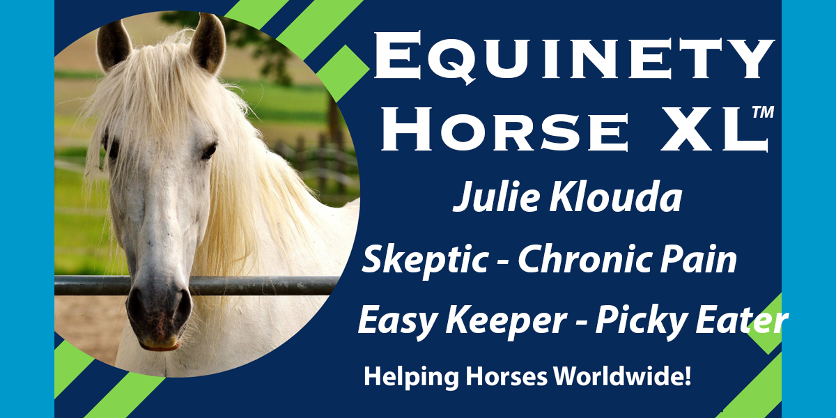 Julie Klouda – Easy Keeper – Picky Eater - Mystery Lameness – Chronic Soreness – VERY Skeptical