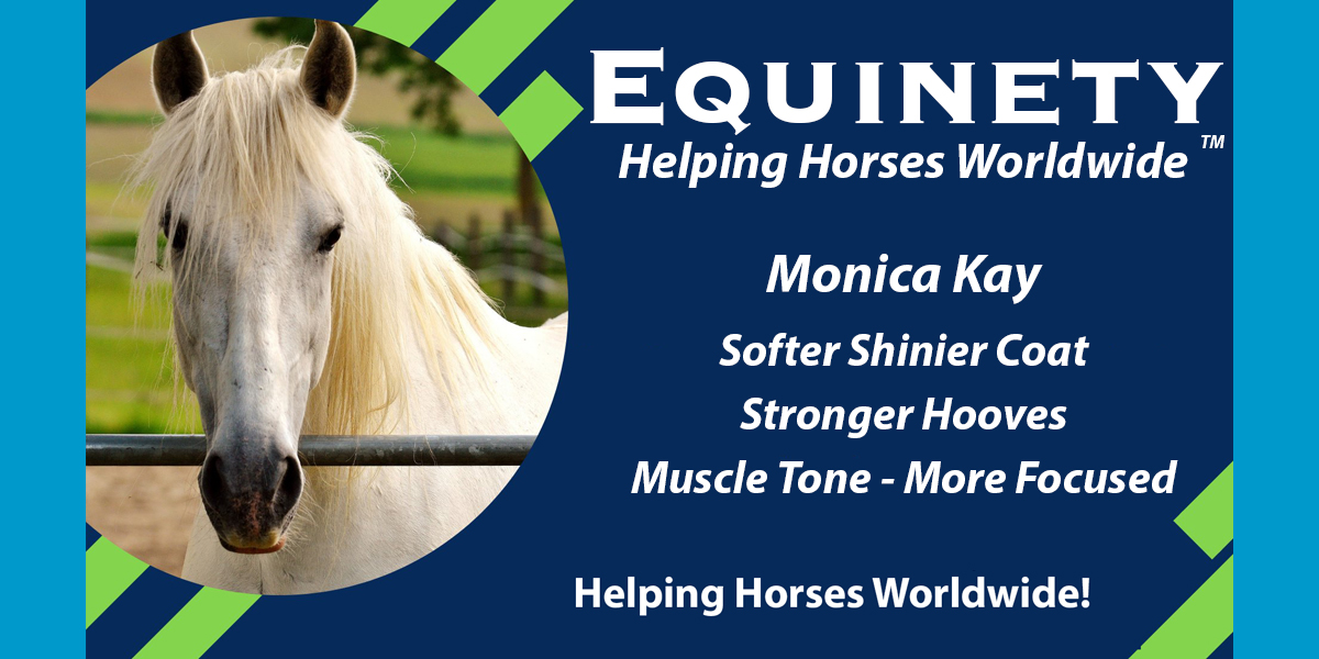 Monica Kay - Softer Shinier coat, stronger hooves, muscle tone, more focused, faster recovery