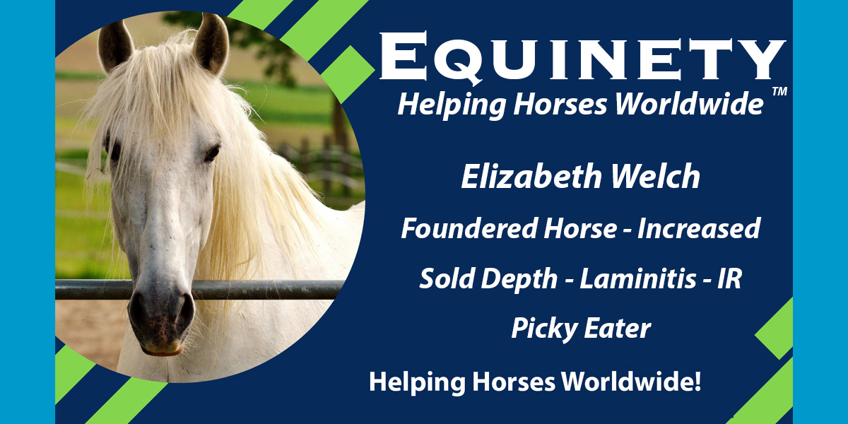 Elizabeth Welch – Severe Foundered Horse – Significant Sole Depth – Laminitis – IR – Picky Eater