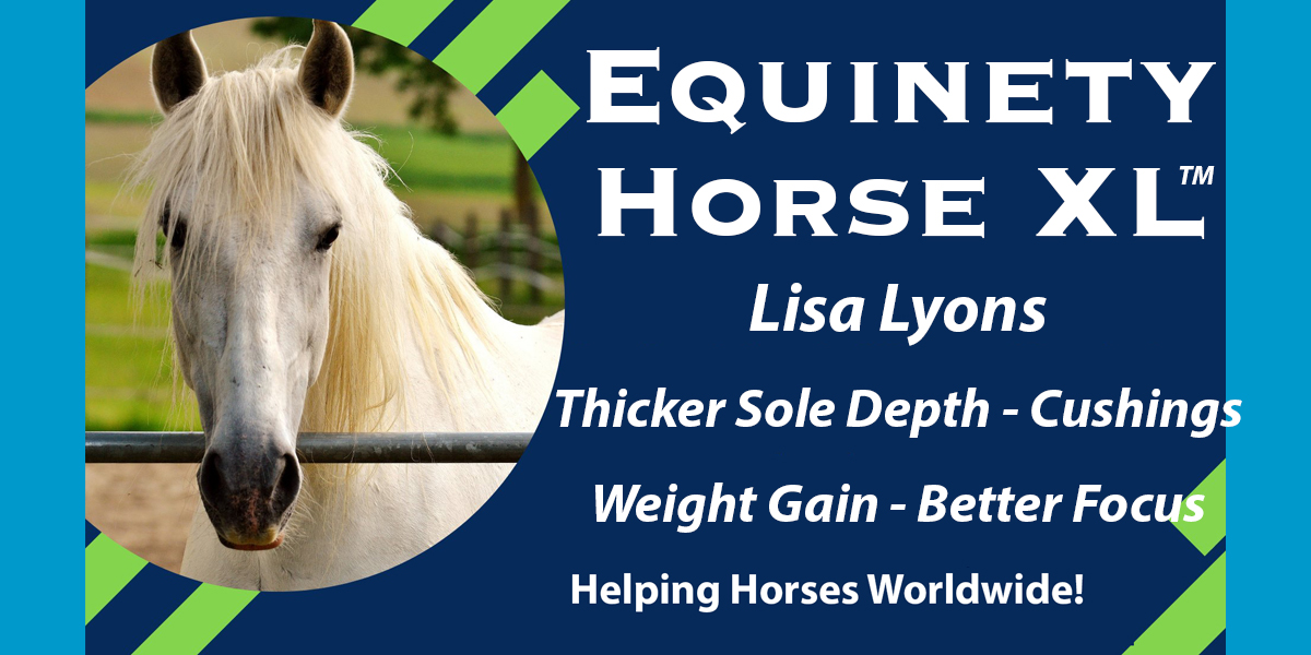 Lisa Lyons - Sole Depth - Underweight – Founders – Laminitis – More Topline – Muscle Quality – Cushings