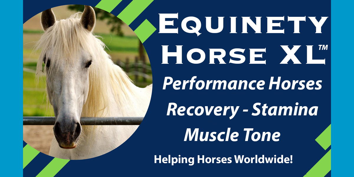Sommer Smith - Performance Horses THRIVE on Equinety - Skin Allergies - Muscle Tone - Recovery - Stamina - Shinier Coat