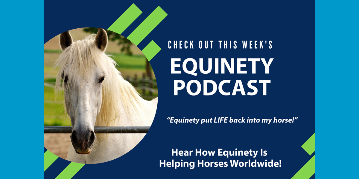 Rheanna Wolk – Abscesses, Faster Healing, Muscle Tone, Equinety put LIFE back into my horse