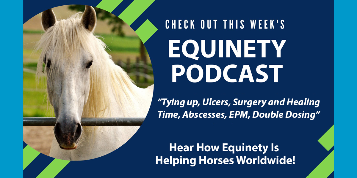 Danielle and Kelly Bowser - Tying up, Ulcers, Surgery and Healing Time, Abscesses, EPM, Double Dosing