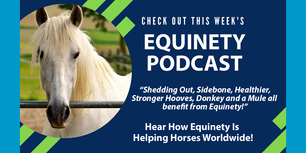 Jackie Allen -  Shedding Out, Sidebone, Healthier, Stronger Hooves, Donkey and a Mule all benefit from Equinety!