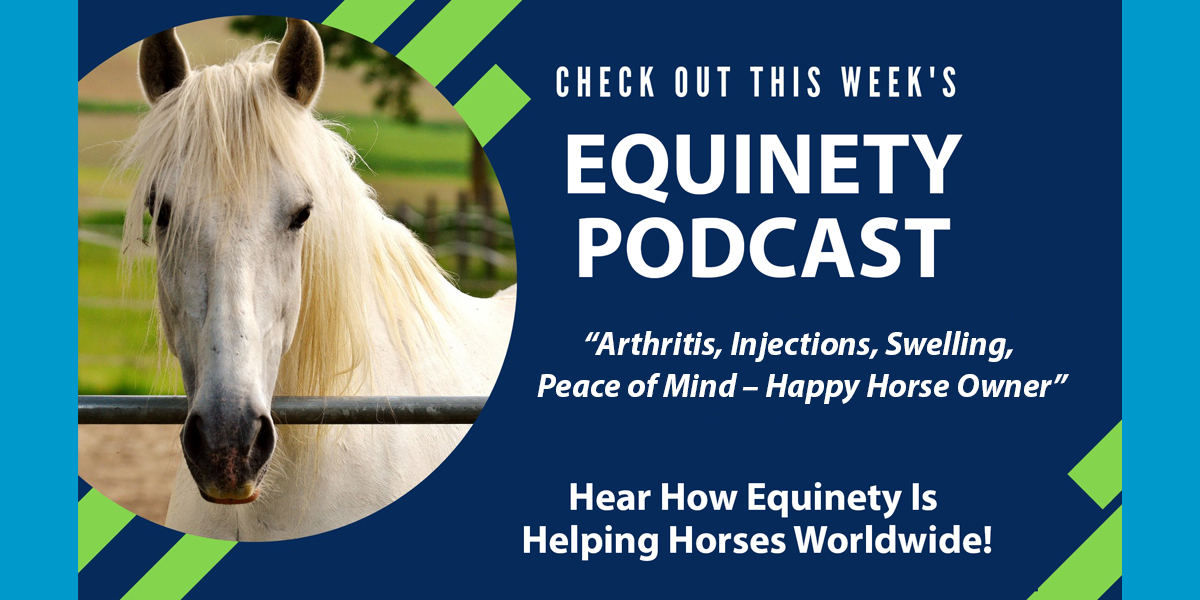 Arthritis, Injections, Swelling, Peace of Mind - Happy Horse Owner