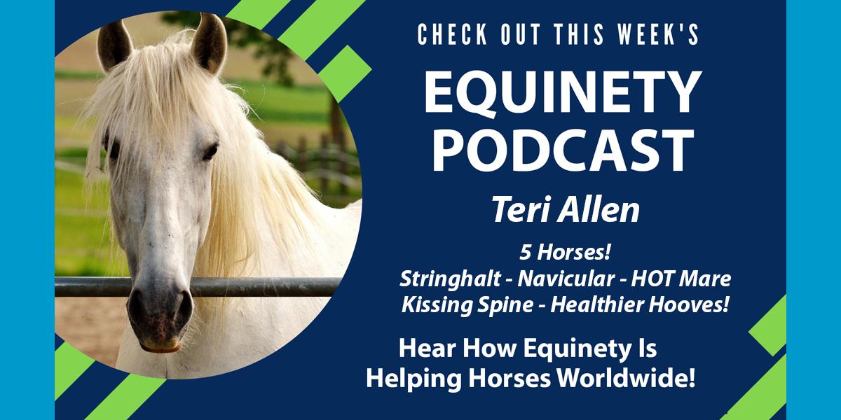 Teri Allen - 5 Horses - Stringhalt - Stifle - Mystery Lameness - Navicular - HOT Mare - Kissing Spine