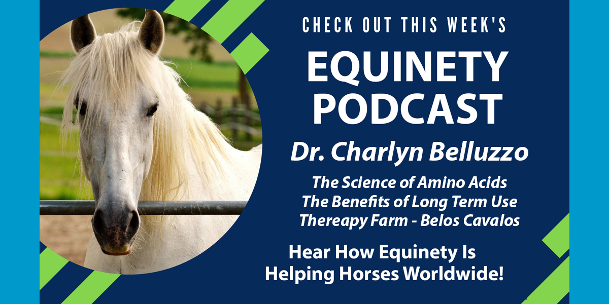 Dr Charlyn Belluzo - The Science of Amino Acids – How they work at a cellular level – The Benefits of Long Term - Belos Cavalos Therapy Farm