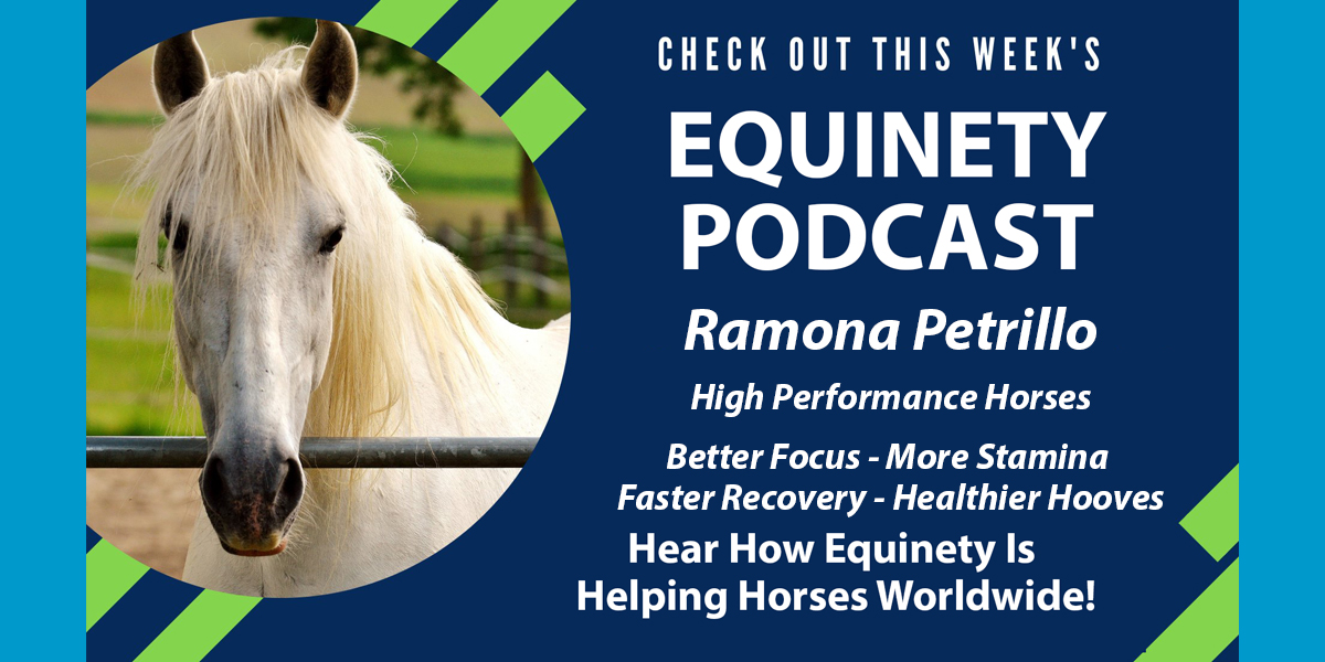 Ramona Petrillo - PEFORMANCE HORSES - CRIBBER – Chronic Pain – More Calm – Better Focus – thin shelly hooves