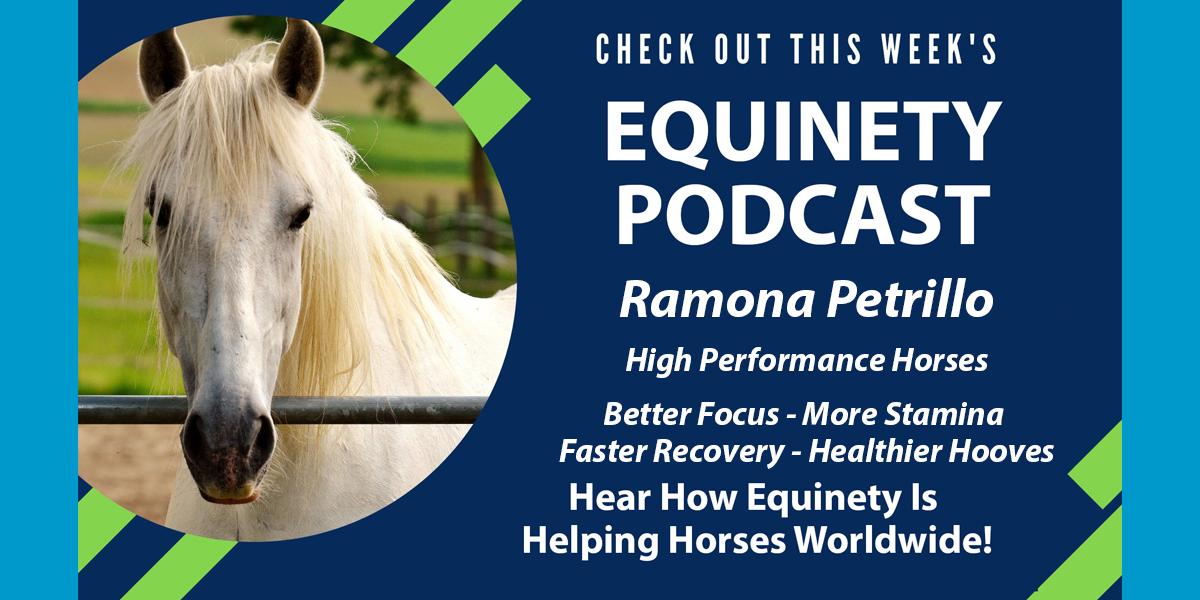 Ramona Petrillo - PEFORMANCE HORSES - CRIBBER – Chronic Pain – More Calm – Better Focus – thin shelly hooves