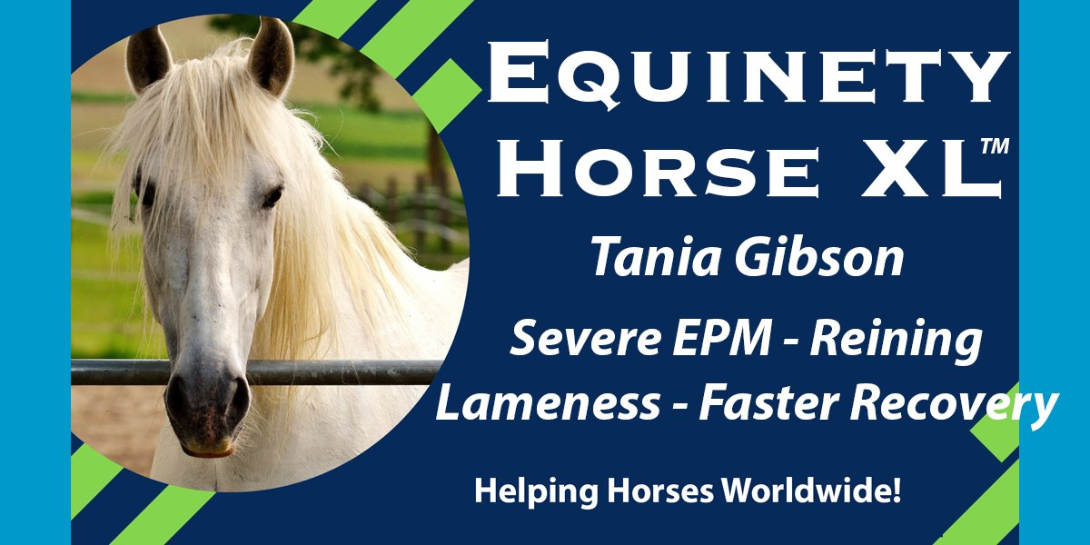 Tania's First encounter with EPM, Equinety Turns Severe Lameness Around