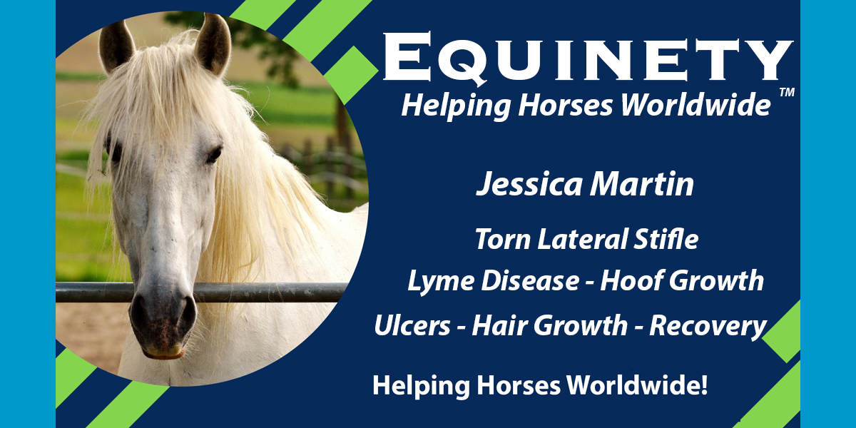 Jessica Martin - Lateral Stifle - Lyme Disease - Hoof Growth - Ulcers