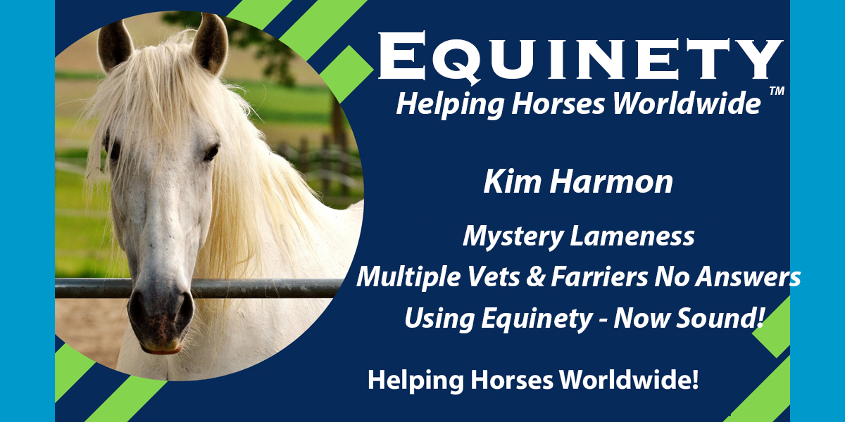 2 Veterinarians no answers – Using Equinety - now sound and riding my horse again!