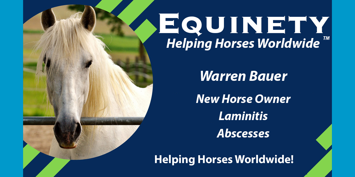 Warren Bauer - New Horse Owner - Laminitis - Abscesses